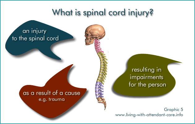 Living with Attendant Care: Spinal Cord injury : What is spinal cord ...